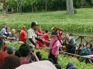 Bukan Cuma Ragunan, Kebun Binatang Juga Ada di Jakarta Utara
