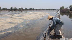 Warga Minta Ganti Tanah, Bupati Belum Beri Izin Lahan Garam di NTT