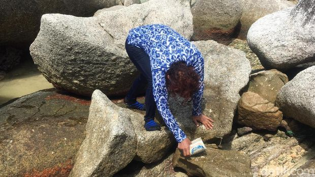 Susi pungut sampah di Pantai Batu Sindu Natuna
