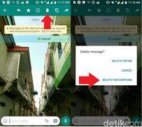 Belum Bisa Hapus Pesan Terkirim di WhatsApp? Jangan Cemas!