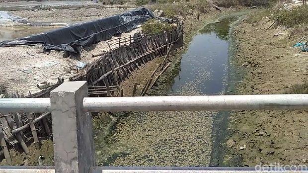 Air sungai juga mengalami pencemaran yang sama.