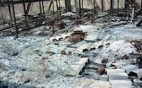 Sisa-sisa reruntuhan dan puing-puing di Pulau Vozrozhdeniya (Nick Middleton/BBC)
