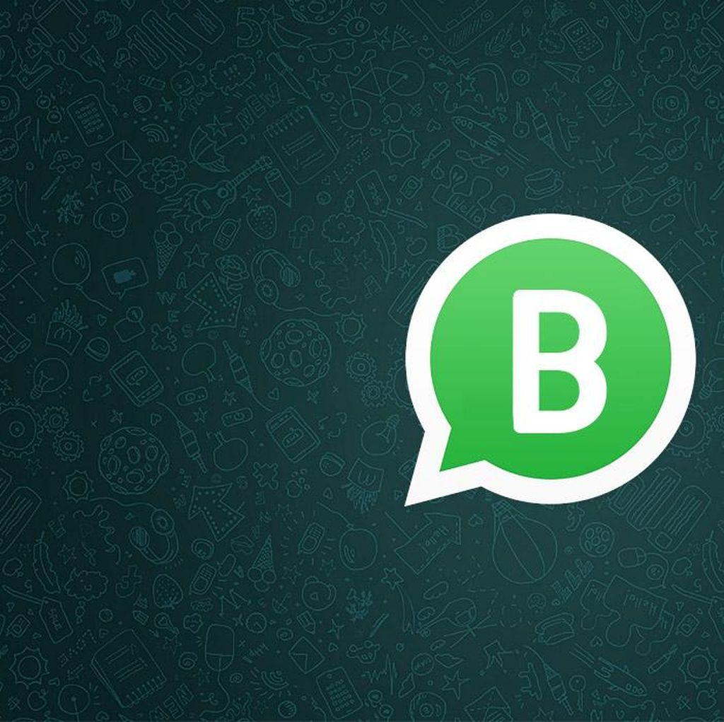 WhatsApp Business Segera Hadir di iPhone