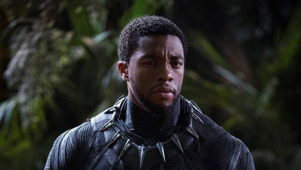 Nick Fury dan Black Panther akan Bertemu Suatu Saat Nanti