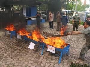 Kosmetik Ilegal Senilai Rp 2,7 Miliar Dimusnahkan BPOM Aceh