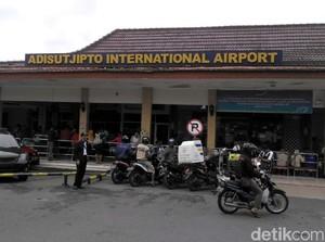 Ini Kata AirNav Soal Kawanan Burung Serbu Bandara Yogyakarta