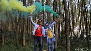 Foto: Bandung Punya Hutan yang Romantis