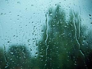 Fototostop: November Rain