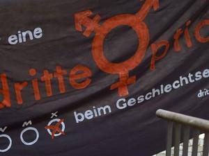 Pengadilan Jerman Putuskan Jenis Kelamin Ketiga Harus Diakui
