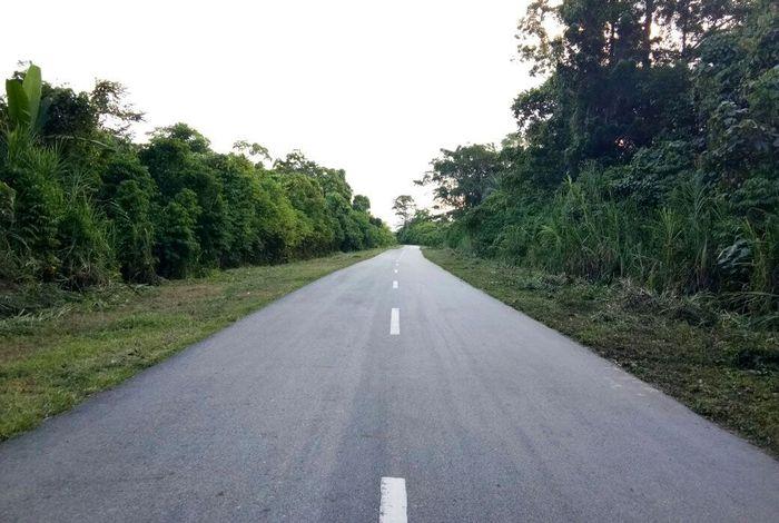 Trans Papua ruas Manokwari (ibu kota provinsi Papua Barat)-Kebar dibangun sepanjang 193 kilometer (km). Dengan adanya ruas jalan tersebut, waktu tempuh Kebar ke Manokwari dan sebaliknya bisa dipangkas dari yang biasanya 8 jam menjadi hanya 4 jam. Pool/BP Jalan Nasional XVII Manokwari-Papua Barat.