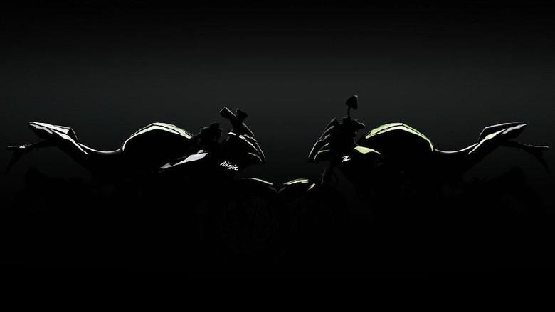 Kawasaki Ninja 125 Foto: Dok. Kawasaki