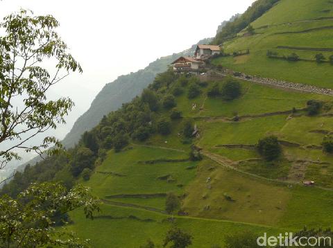 Rawan Longsor, 800 Ha Lereng Gunung Slamet Brebes Jadi Ladang Sayur