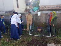 Unik, Bunga Bangkai Bertunas Tiga Tumbuh di Sukabumi