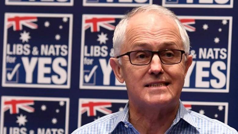 Hasil Plebisit Pernikahan Sesama Jenis Jadi Ujian PM Malcolm Turnbull