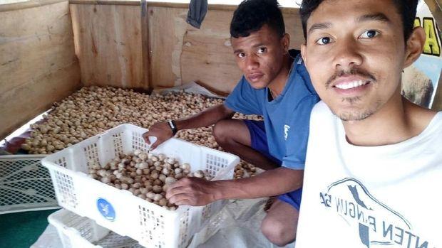 Rombak Sistem, Agis Tingkatkan Pendapatan Petani Rp 300 Ribu/Hari