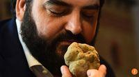 Terfas, Jamur Truffle Putih yang Tumbuh di Gurun Libya