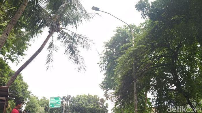 Tiang lampu yang ditabrak Setya Novanto. Foto: Danang Sugianto/detikFinance