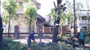 Rawan Tumbang, Ratusan Pohon Perindang Jalan di Solo Dipertahankan