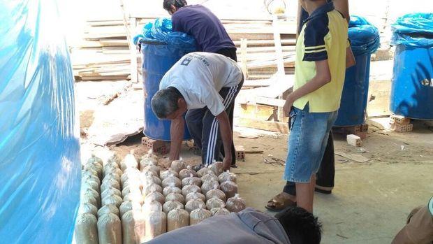 Rumah Jamur, Harapan Baru Masyarakat Kampung Pedado Palembang