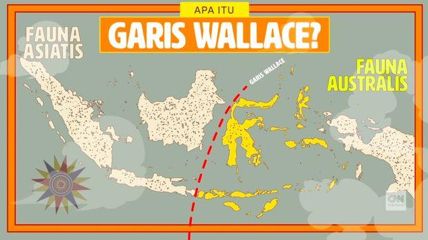 Ternate, Lahirnya Teori Evolusi dari Wallace yang Dilupakan
