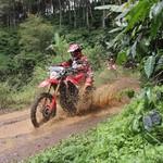 Taklukkan Bukit Moko, Honda CRF150L Jawaban Pencinta Motor Trail