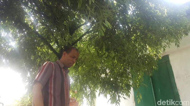 Pohon Nagasari di Makam Ki Ageng Gribig Ini Dikenal Berkhasiat