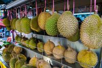 Pecinta Durian? Kalau ke Medan Wajib Mampir ke 2 Tempat Ini!