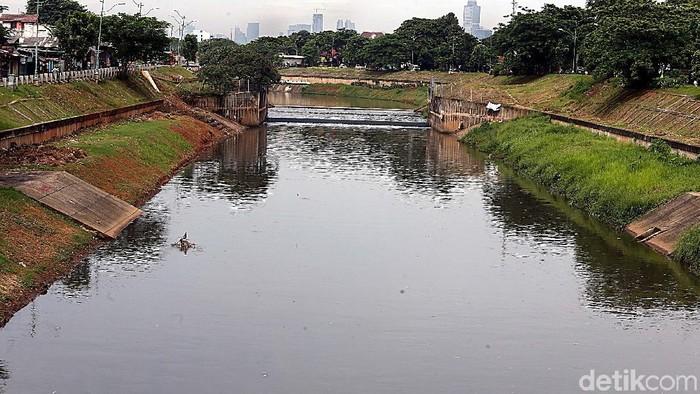 Hebat, Kanal Banjir Timur, Jakarta, Selasa (21/11/2017), terlihat lebih rapi dan berfungsi sebagai mana mestinya. Begini wujudnya.