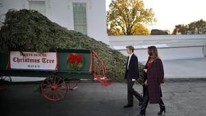 Momen Istri dan Anak Trump Sambut Pohon Natal di Gedung Putih