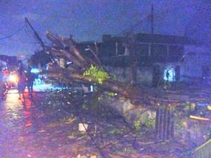 Video Kepanikan Warga Saat Angin Puting Beliung Amuk Ratusan Rumah di Sidoarjo