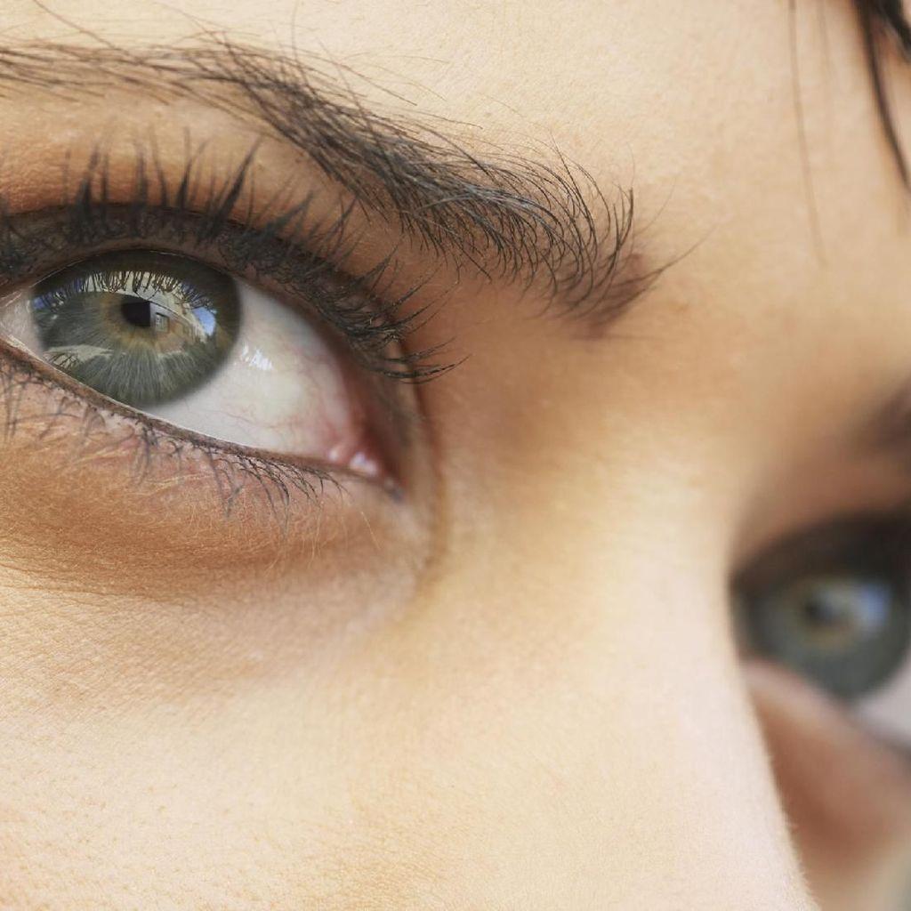 Mengapa Penglihatan Kita Tidak Pernah Gelap Saat Berkedip?