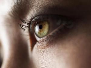 5 Tips Hilangkan Kantung Mata Hitam, Aman & Mudah Dilakukan di Rumah
