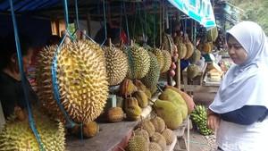 Asyik, Berwisata Sambil Berburu Durian di Telaga Ngebel Ponorogo