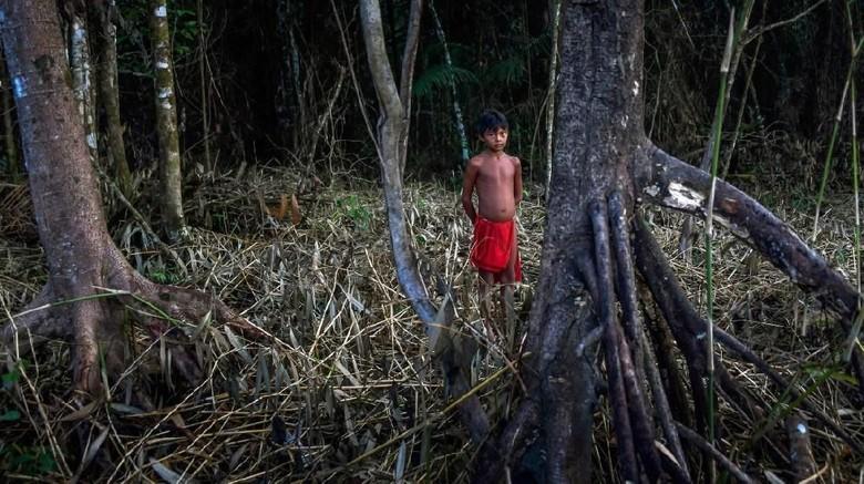 Suku Waiapi di Amazon yang menolak untuk punah