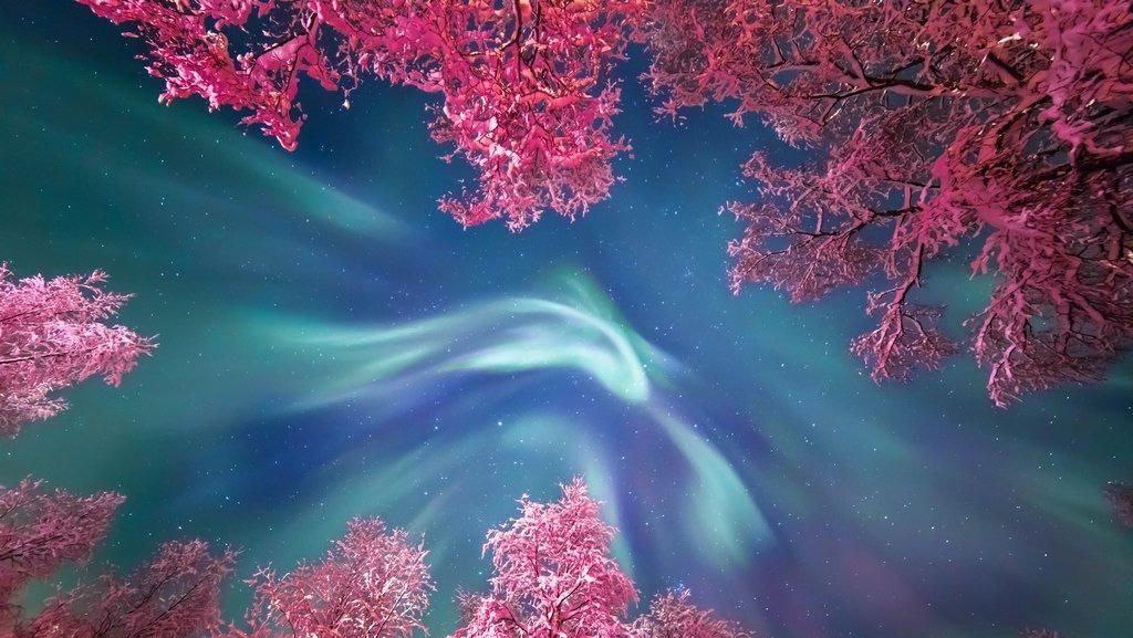 Deretan Foto Alam Semesta yang Membuat Terpana