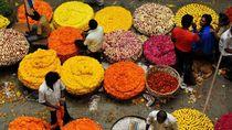 Foto: Musim Panen Paling Berwarna di Dunia