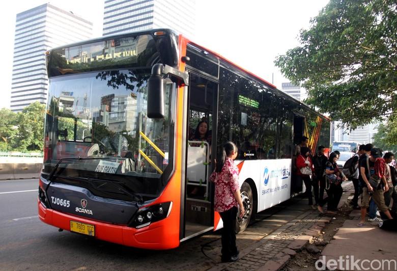 TransJ Siapkan Bus Gratis Angkut Pengunjung Ragunan Besok
