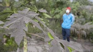 Foto: Hujan Abu Gunung Agung, Warga Bali Gunakan Masker