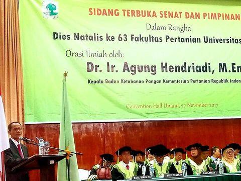 Kepala Badan Ketahanan Pangan Kementerian Pertanian Agung Hendriadi