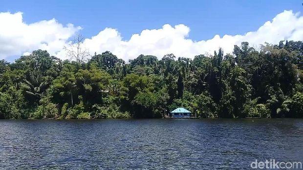 Danau Lindu, Surga Tersembunyi di Antara Belantara