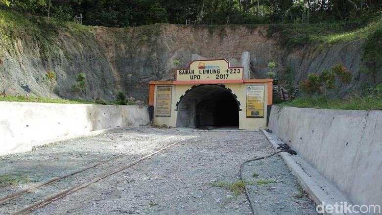 Bekas tambang batubara di Sawahlunto (Randy/detikcom)