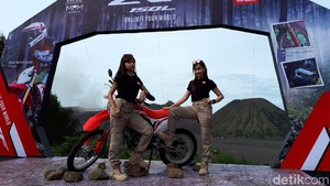 Honda CRF150L Bisa Juga untuk Borongan