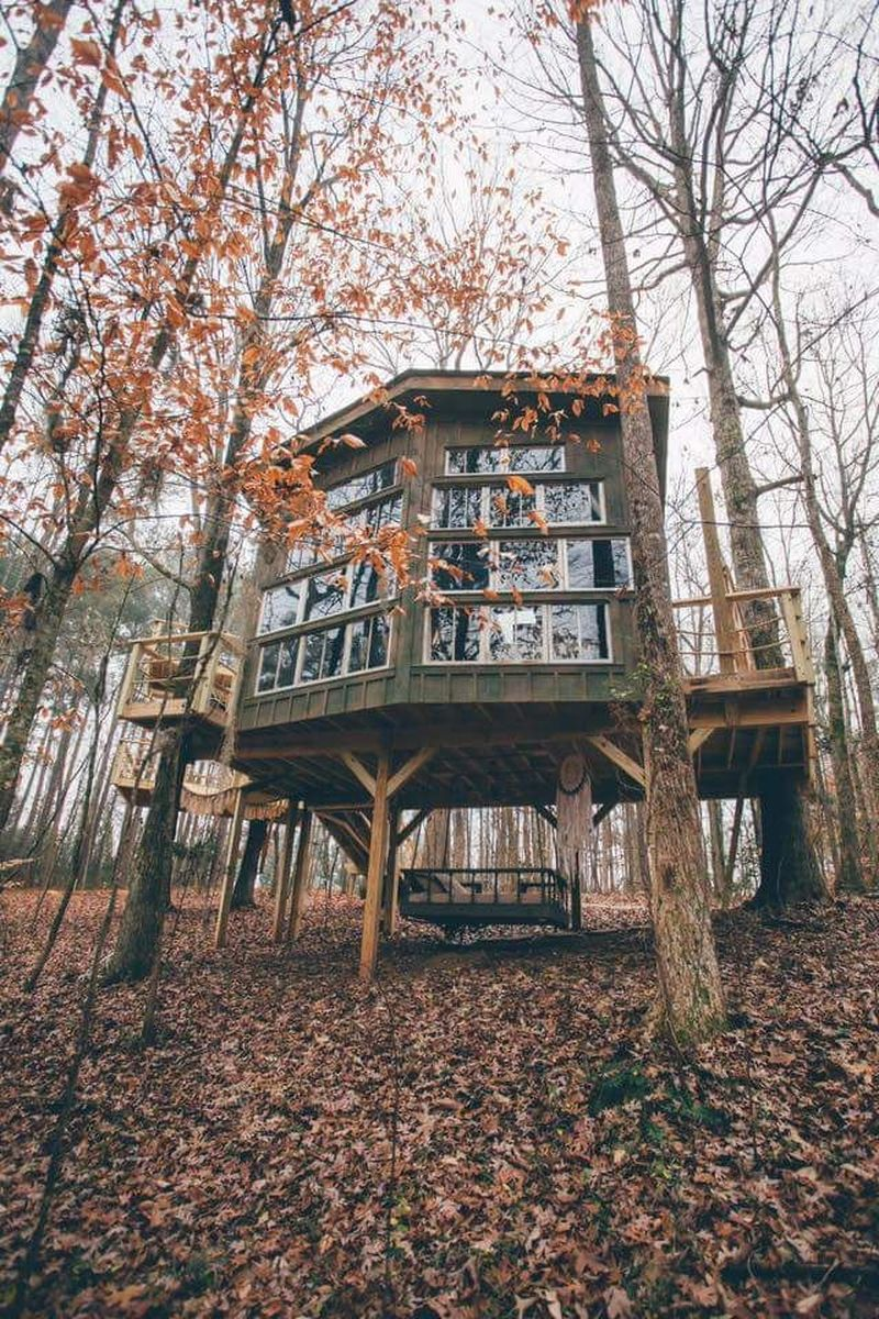 Adalah Bolt Farm Luxury Romantic Treehouse, sebuah hotel yang mengusung tema rumah pohon dengan fasilitas yang tidak biasa. Suasananya pun romantis (Foto: Facebook/Bolt Farm Treehouse)
