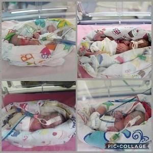 Ikut Program Inseminasi, Sefriani Lahirkan Bayi Kembar 4 di Palembang