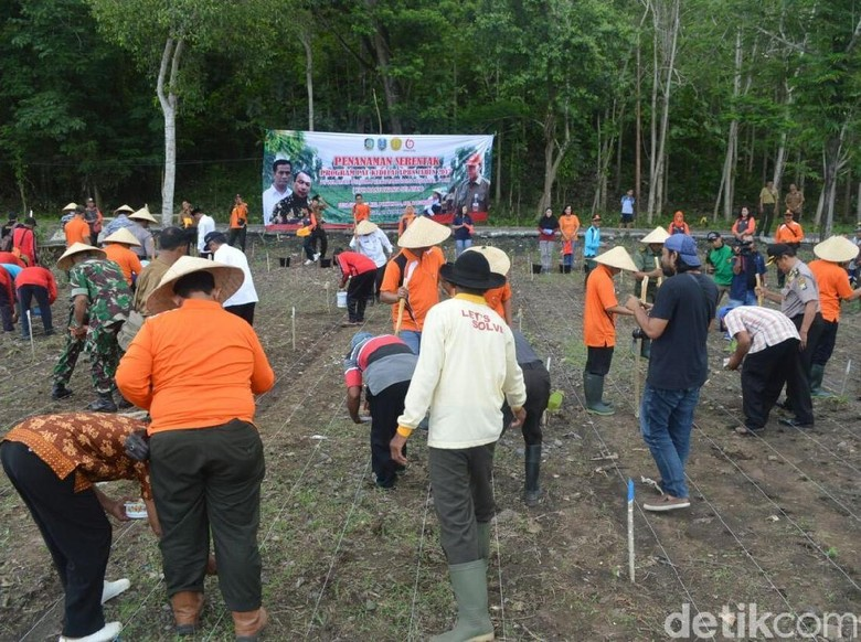 Perhutani Serahkan Bantuan Bibit Kedelai Rp 21 Miliar ke Banyuwangi