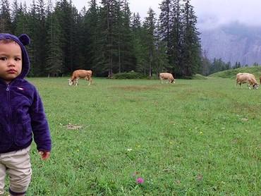 Juna dan sapi-sapi. (Foto: Instagram/ @titi_kamall)