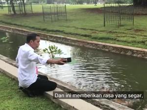 Jokowi Nge-Vlog: Beri Makan Rusa hingga Naik Kuda Istana