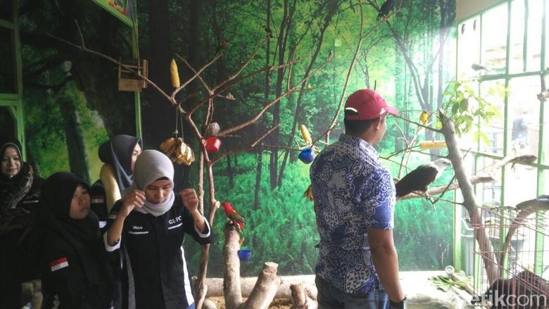 Foto: Kebun Binatang Mini di Kota Gorontalo (Farid Utina/detikTravel)