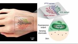 Ilmuwan dari Massachusetts Institute of Technology (MIT) tengah mengembangkan tato yang terbuat dari bakteri. Tato ini bisa mendeteksi kondisi pemakainya.