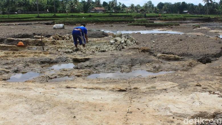 Diterjang Banjir, Sawah di Gunungkidul Berubah Jadi Batu Cadas